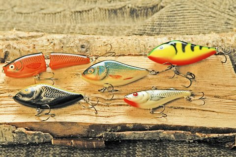 Link bait lures